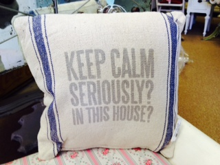 Pillow ...  Seriously.  In this House